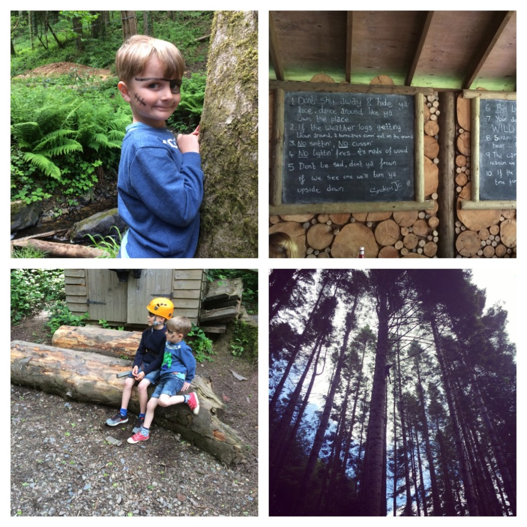 1. hide and seek. 2. Camp  Smokey rules. 3. Having a chat. 4. tree climbing!