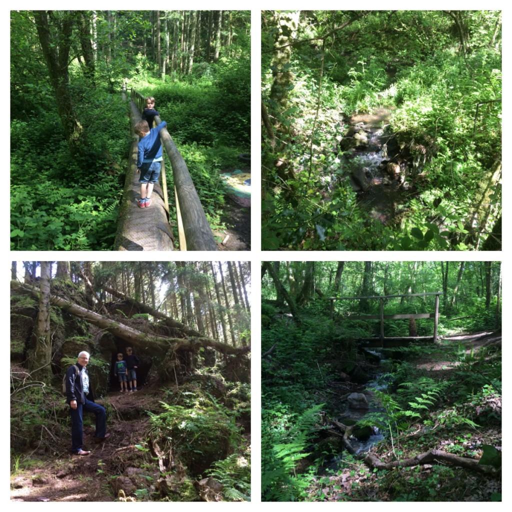 1-4 the beautiful nature trail