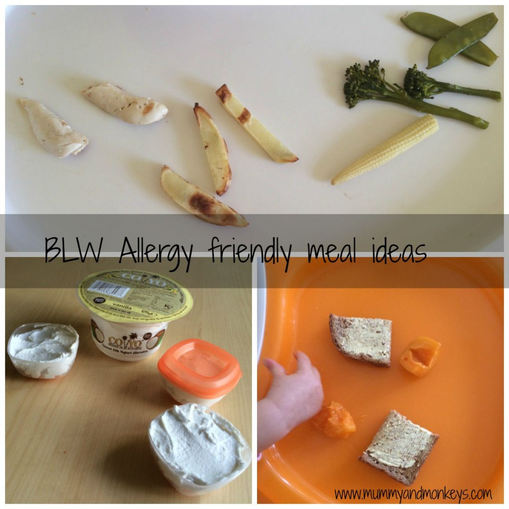 BLW allergy friendly meal ideas