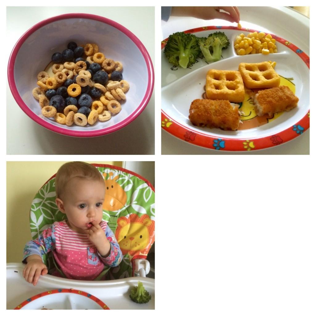 Allergy friendly BLW meal ideas