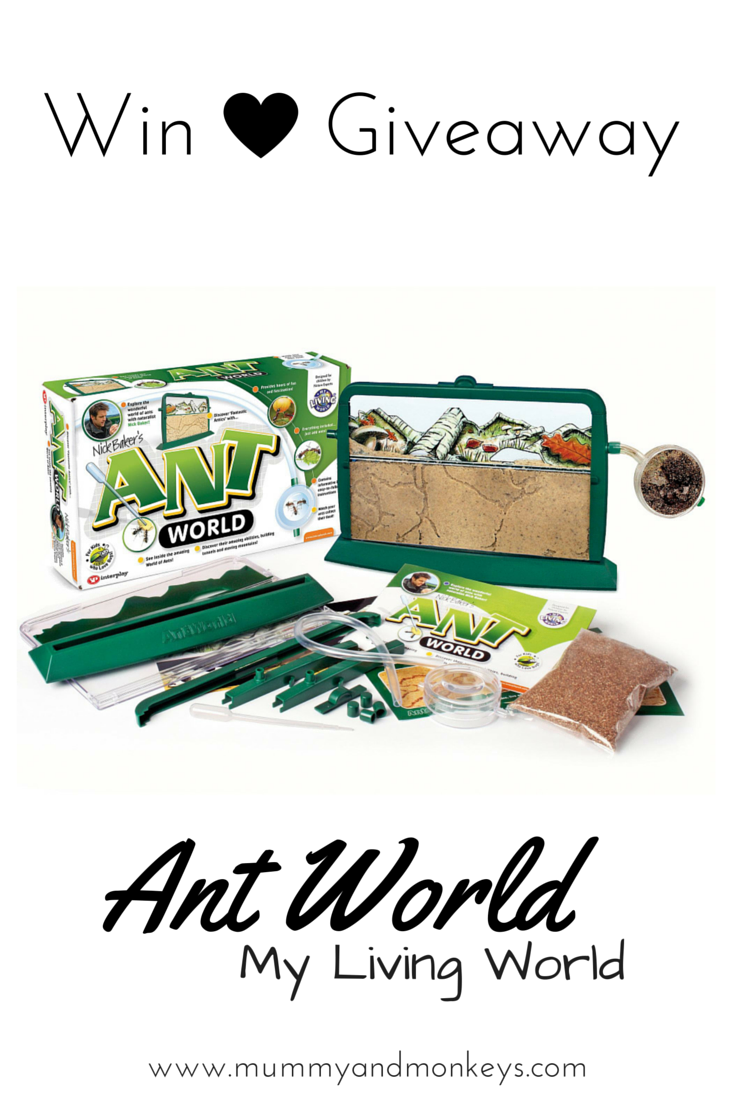 Win Ant World by My Living World