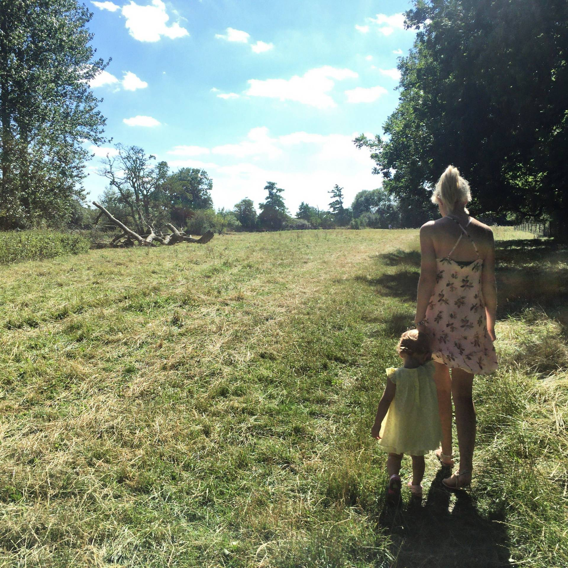 A little girl with a pretty yellow dress holding hands with her Mummy who is in a pink pretty dress. They are walking through a field with green grass, lined with trees, it's a hazy, hot sunny afternoon