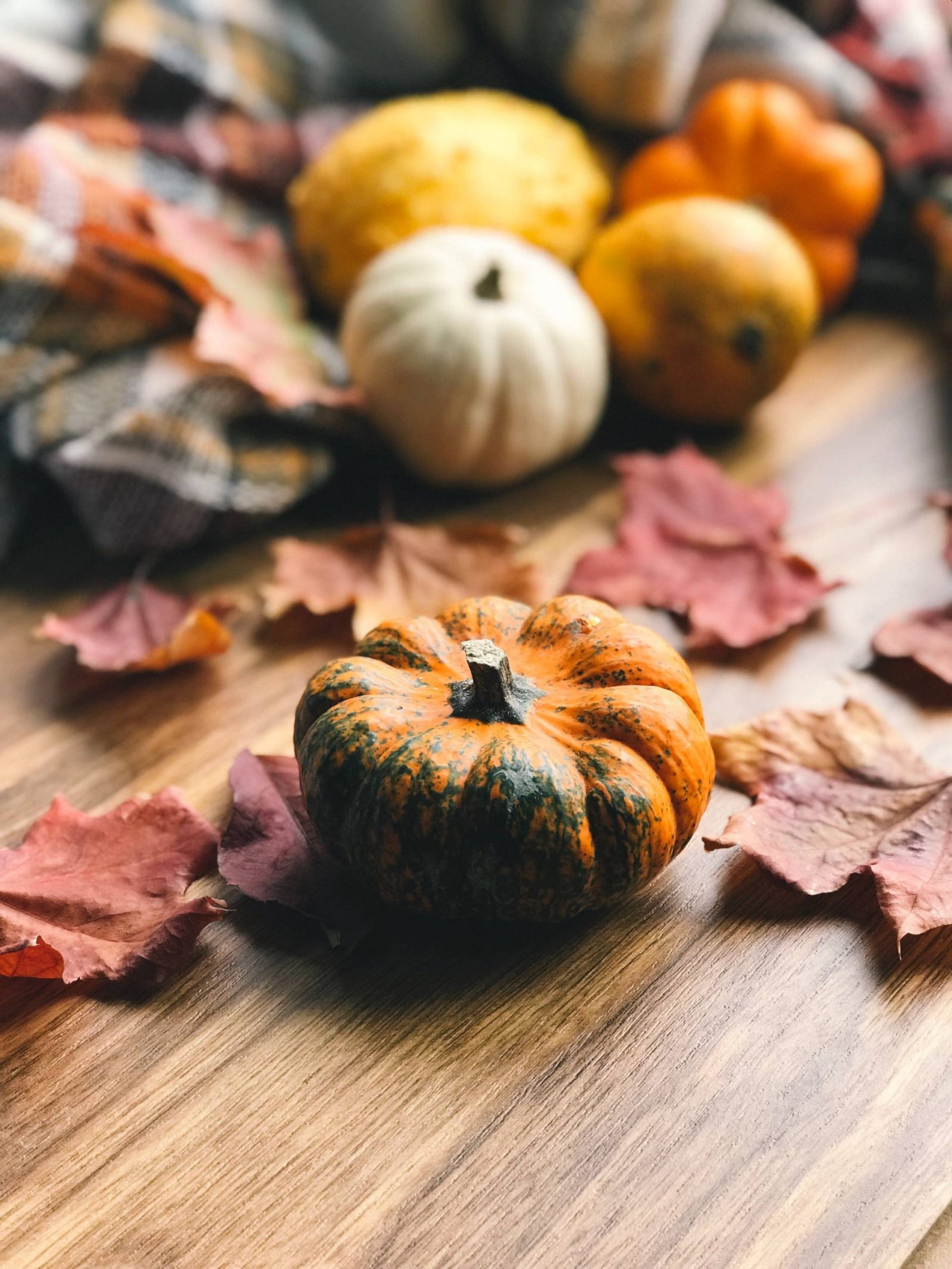ways to embrace autumn