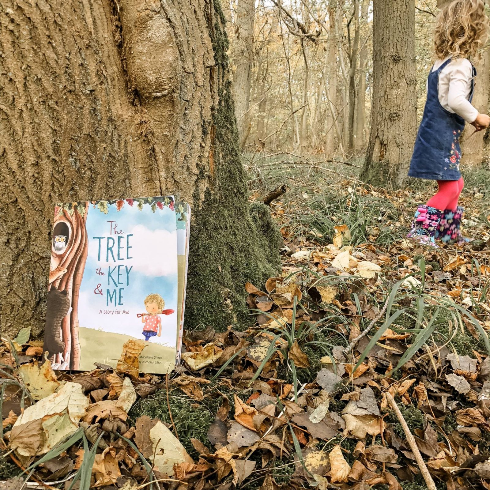 The Tree The Key & Me review